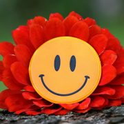 mindfulness self compassion meditation well being laughter health joyhappy smiling laughter feelgood