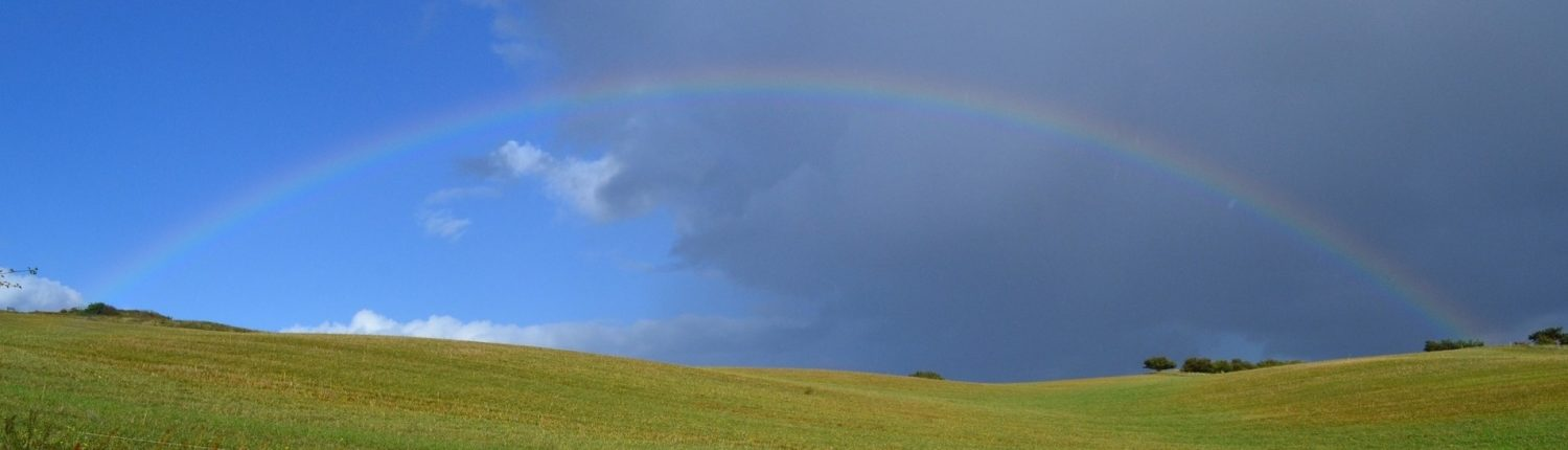happy healthy rainbow nature wellbeing